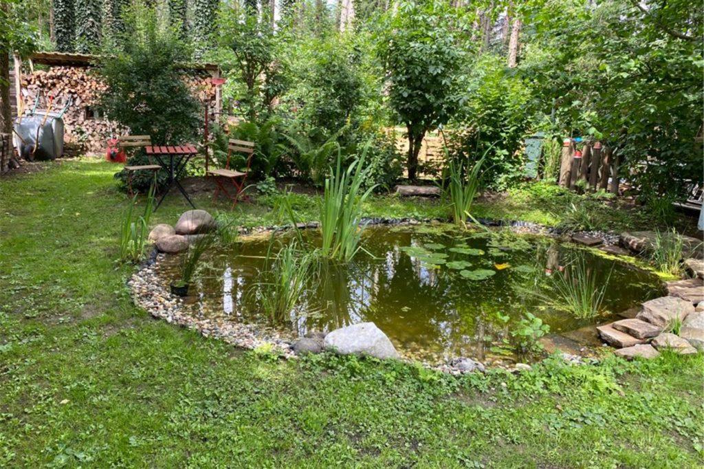 Zwei naturnahe Teiche gibt es in dem Ergster Garten.