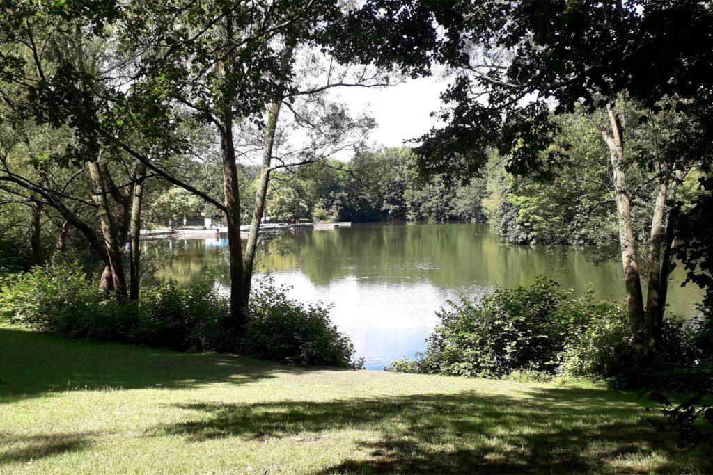 Auch der See im Revierpark Wischlingen ist Teil der Wanderung unseres Autors.