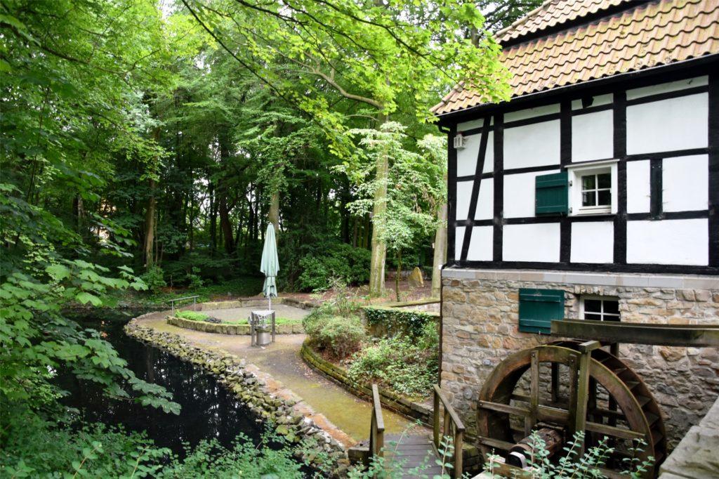 Wie ein Bild aus alten Zeiten: die Schlossmühle in Lippholthausen