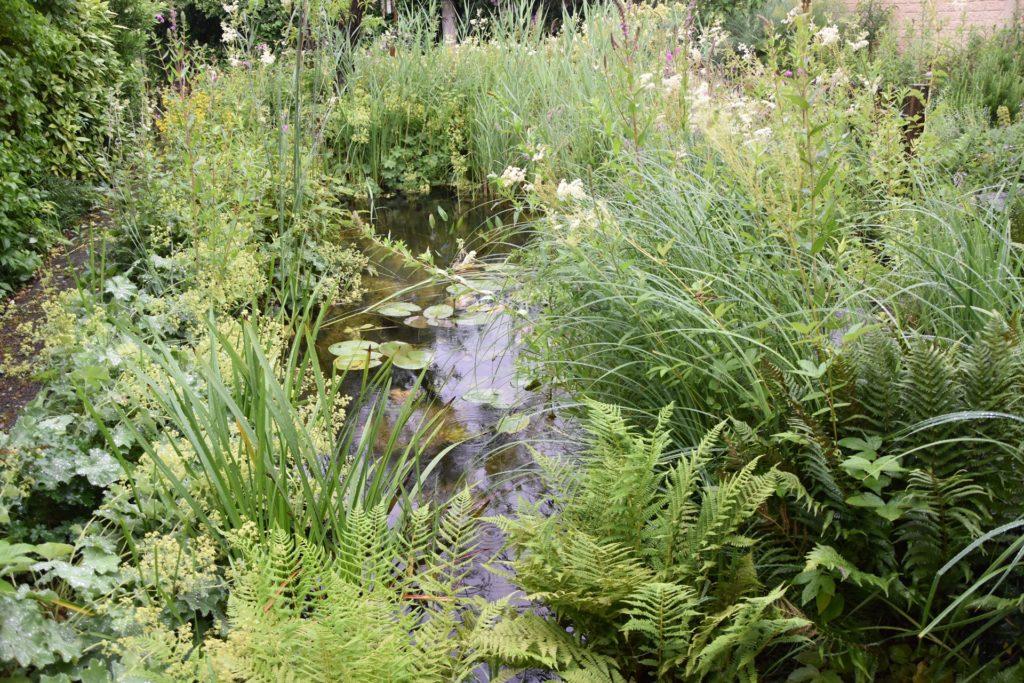 Am Anfang des Gartens befindet sich ein 12 Kubikmeter großer Teich, in den das Regenwasser fließt und der von Fröschen, Molchen und Libellen bewohnt wird.