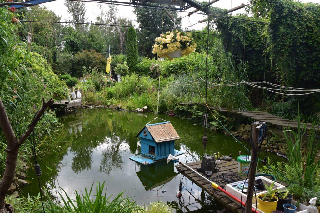 Ein Blick über den 50.000 Liter fassenden und 150 Quadratmeter großen naturnahen Fischteich.