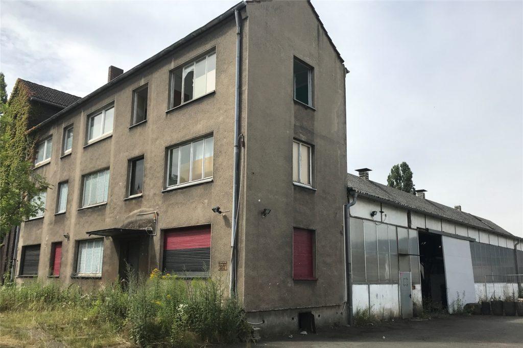 Kein Leben, aber viele kaputte Scheiben, überwuchernde Hauseingänge und Hallen voller Müll findet man an der Wartburgstraße.