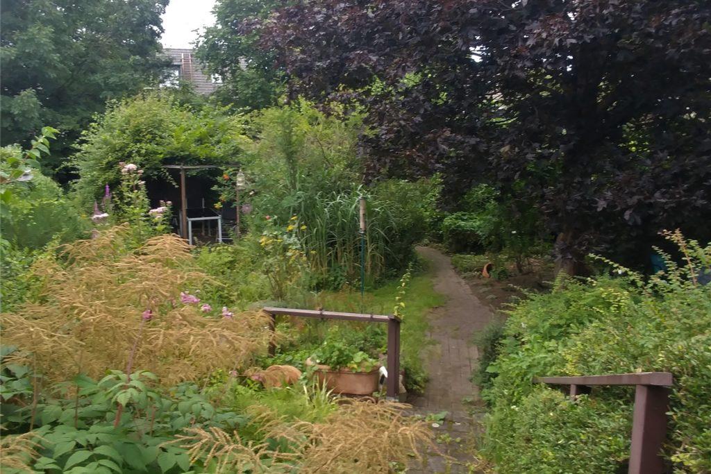 1978 zog Angelika Wagener in das Elternhaus ihres Mannes ein. Seitdem hat sie den Garten grundlegend umgestaltet.