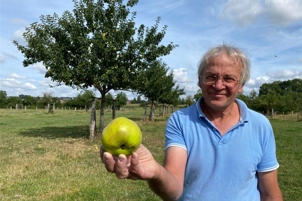 35 Apfelbäume hat Bernardin Schenk auf seinem Grundstück stehen. Allein auf der Wiese hinter seinem Haus stehen neun verschiedene Sorten.