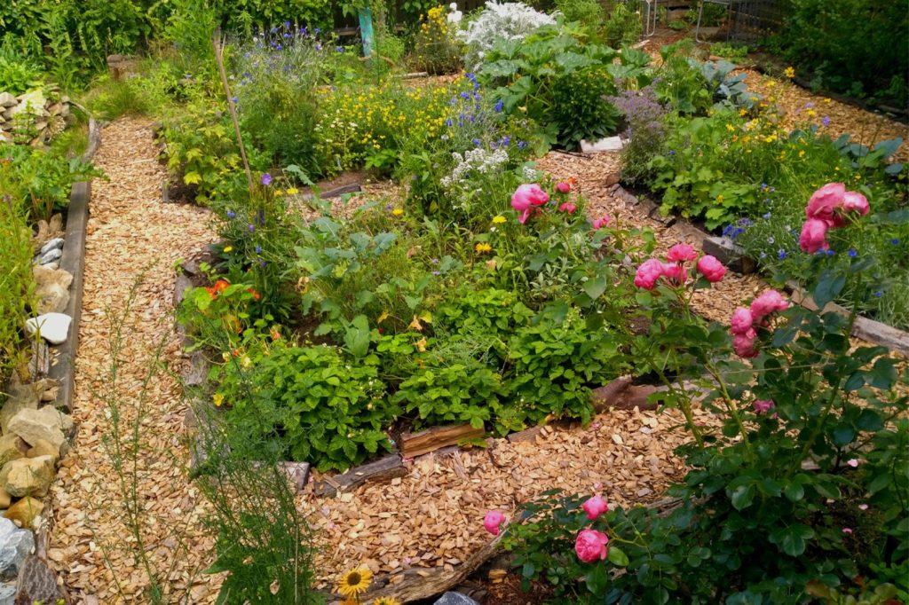 Im Bauerngarten von Denise Lorenz wachsen verschiedene Heilkräuter, Obst- und Gemüsepflanzen.