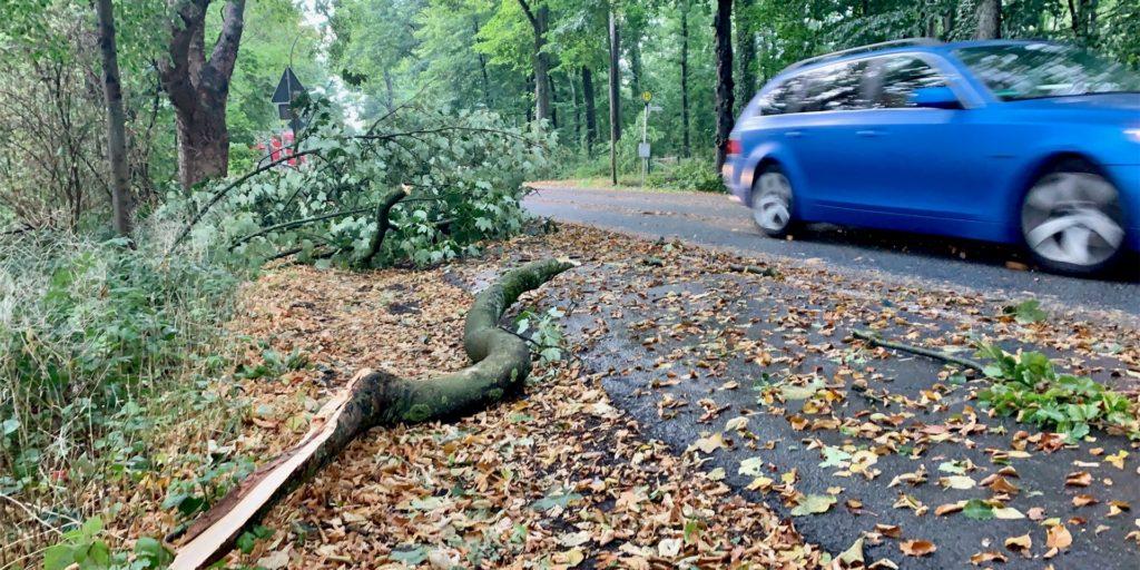 Armdicke Äste fielen am Dienstag auf einer Strecke von rund einem Kilometer auf die Wittbräucker Straße.