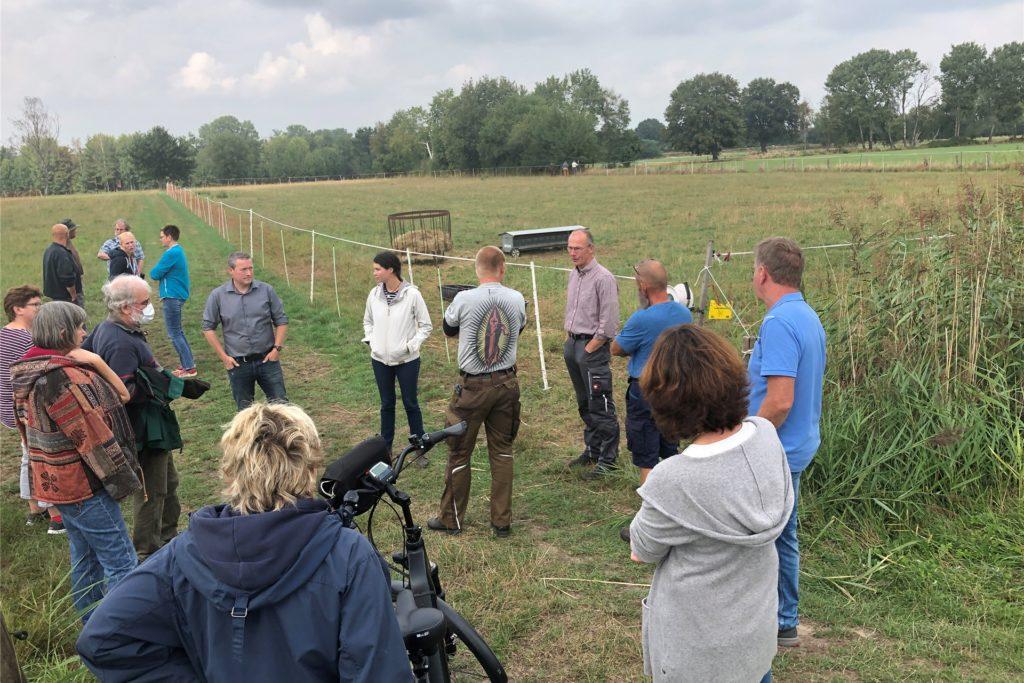 Rund zwei Dutzend Menschen kam am Donnerstagnachmittag zur Wiese am Meesenmühlenweg, wo erneut ein Schaf gerissen wurde.