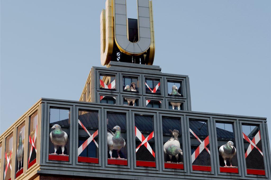 Tauben und Flatterband: So sieht die Installation von Adolf Winkelmann in coronagerechter Form aus.
