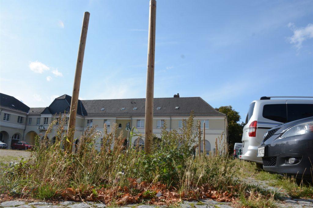 Die Pflöcke an den geplanten Standorten der neuen Bäume am Brunnenplatz sind bereits gesetzt.