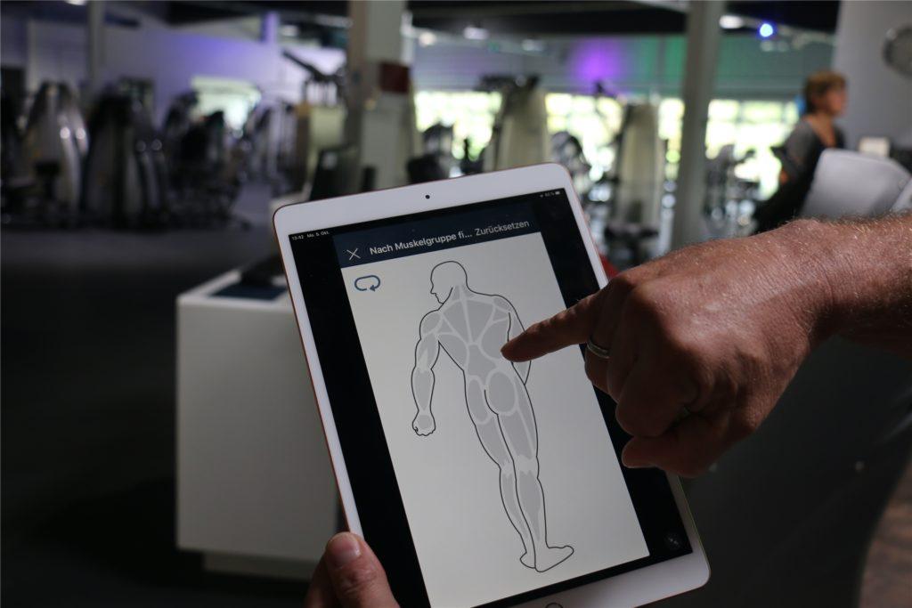 Auf der App kann der Nutzer die Körperpartien, die er trainieren möchte, direkt auswählen. Daraufhin werden individuelle Trainingspläne zusammen gestellt.