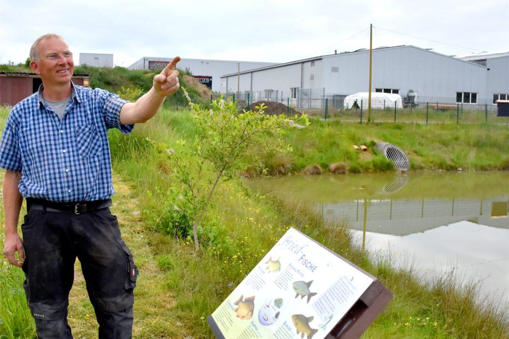 Jürgen Gesing hatte vor ein paar Jahren die Idee für das Biotop rund um das Regenrückhaltebecken an der Daimlerstraße in Oeding. Mit vielen Helfern hat er sie umgesetzt.