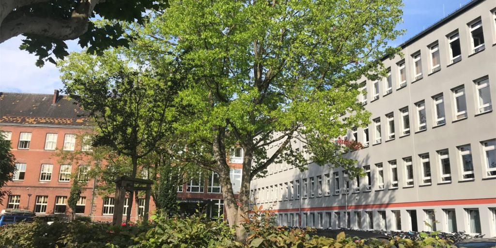 Am Friedrich-Bährens-Gymnasium verfolgt man einen ungewöhnlichen Plan.