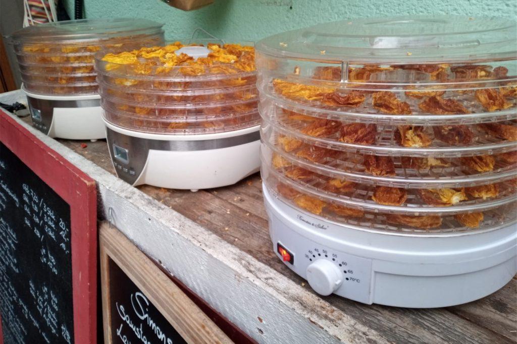 Um auch im Winter frische Produkte anbieten zu können, trocknet Simon Hauswirth seine Chilis.