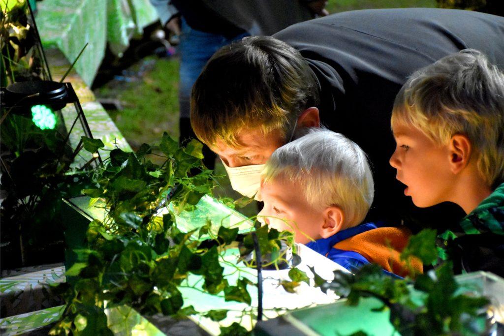 Thomas Roths mit seinen beiden Söhnen Till (5) und Fynn (3). Für die Familie war schnell klar, dass sie die Spider-World besuchen müssen. Schließlich ist Till auch begeisterte Dino-Fan.