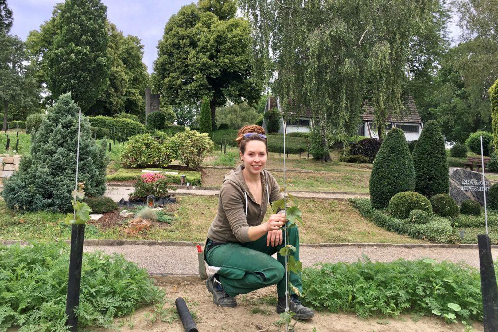 Auszubildende haben die Weinterrassen in Holzen angelegt. Gartenbaumeisterin Silvana Reimers hat das Projekt betreut.