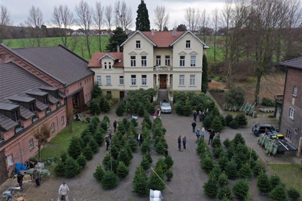 Im Hof von Gut Vellinghausen in Dortmund-Sölde werden auch in diesem Jahr wieder Weihnachtsbäume angeboten. Der Verkauf startet bereits am 5. Dezember