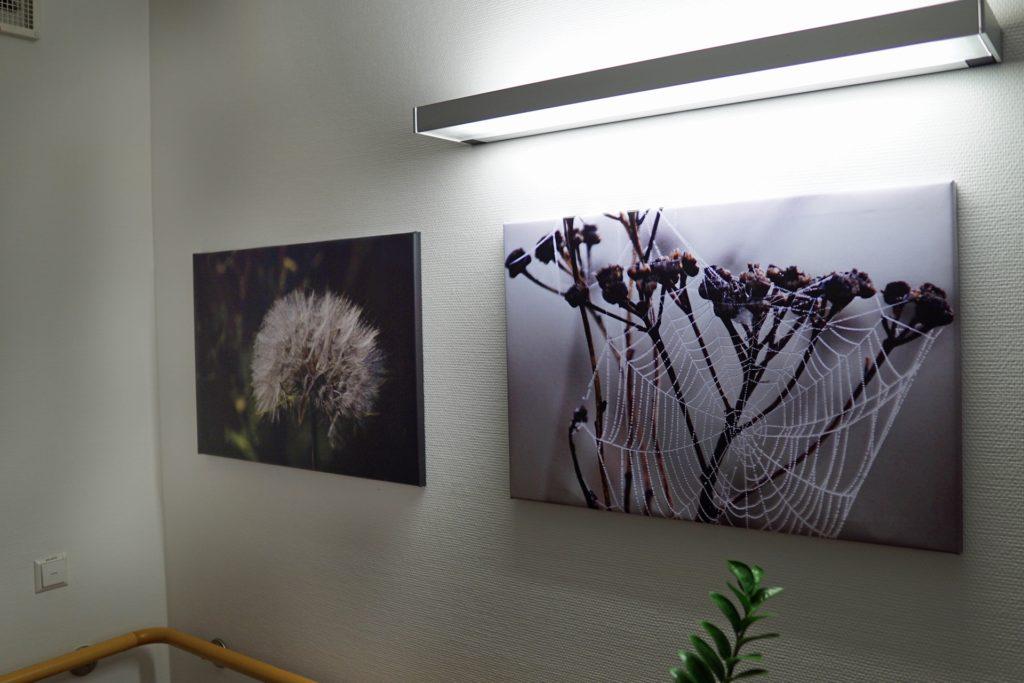 Viele Bilder, die fast ausschließlich rund um Herbern entstanden sind, regen die Erinnerungen der Bewohner an.