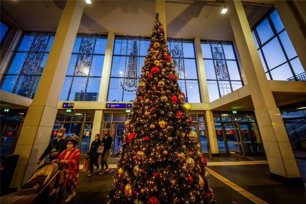 In der Bahnhofshalle sorgt ein beleuchteter Weihnachtsbaum für vorweihnachtliche Stimmung.