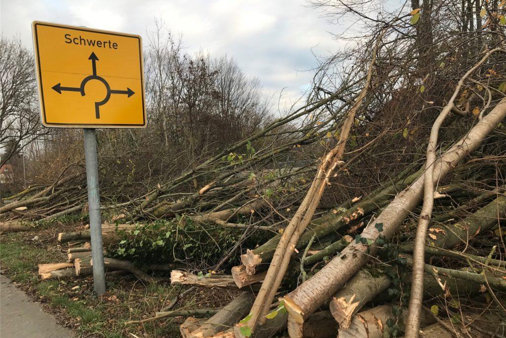 Bis zum Kreisel in Wandhofen wurden die Bäume am Straßenrand abgesägt.