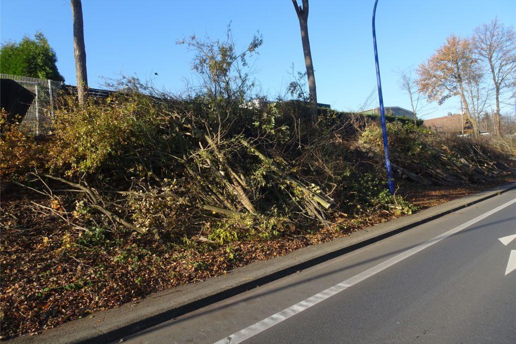 Auch an der Wannebachstraße betrieb der Landesbetrie Straßen NRW Gehölzpflege.