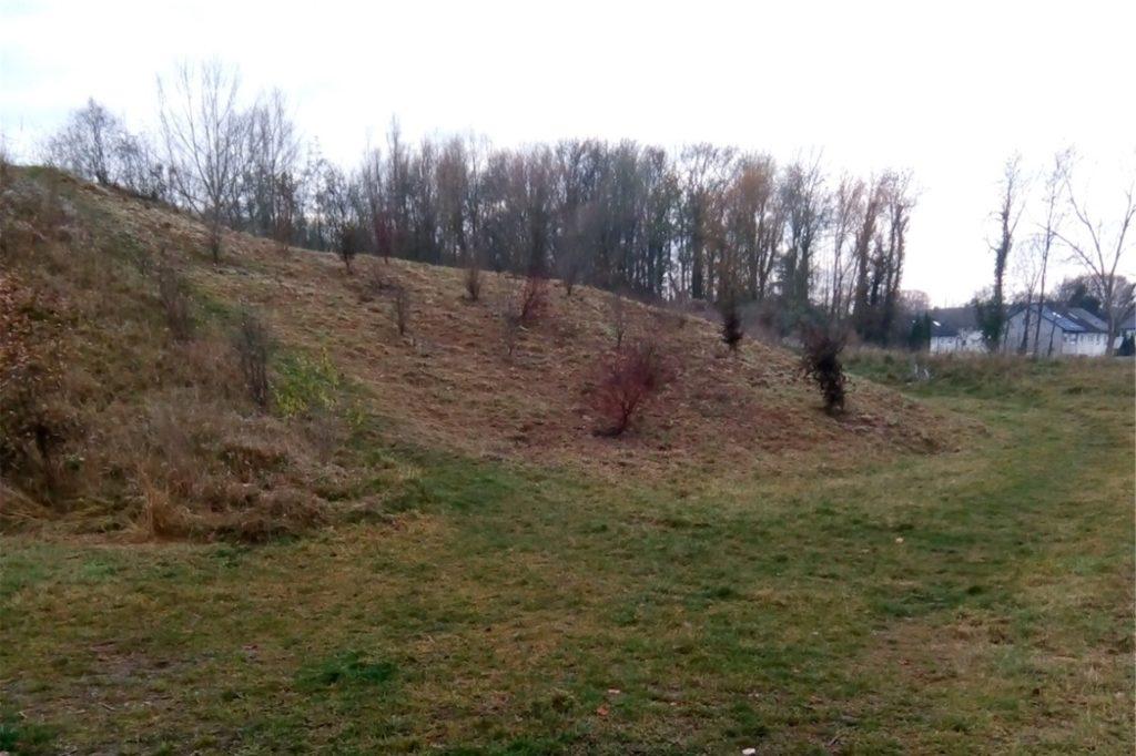 Die ehemalige Mountain-Bike-Halde, die niemand nutzte, wurde gemäht und neu bepflanzt.
