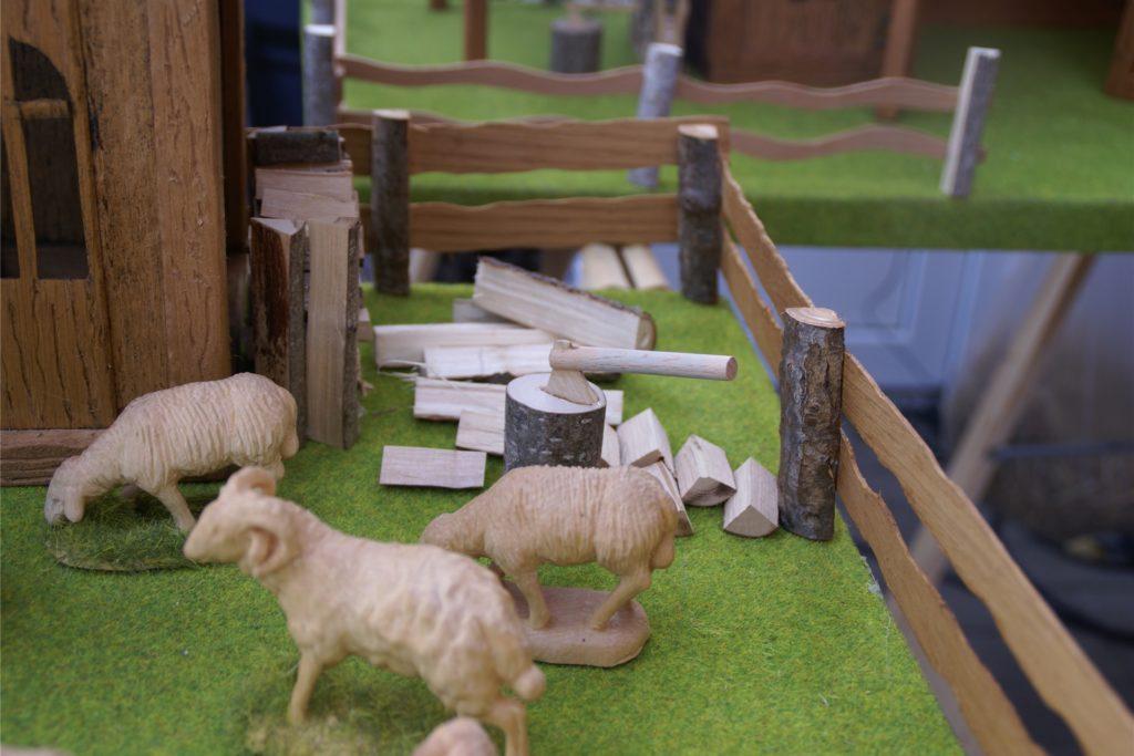 So sehen die Schafe aus, wenn Siegfried Goldhagen die Arbeit beendet hat.