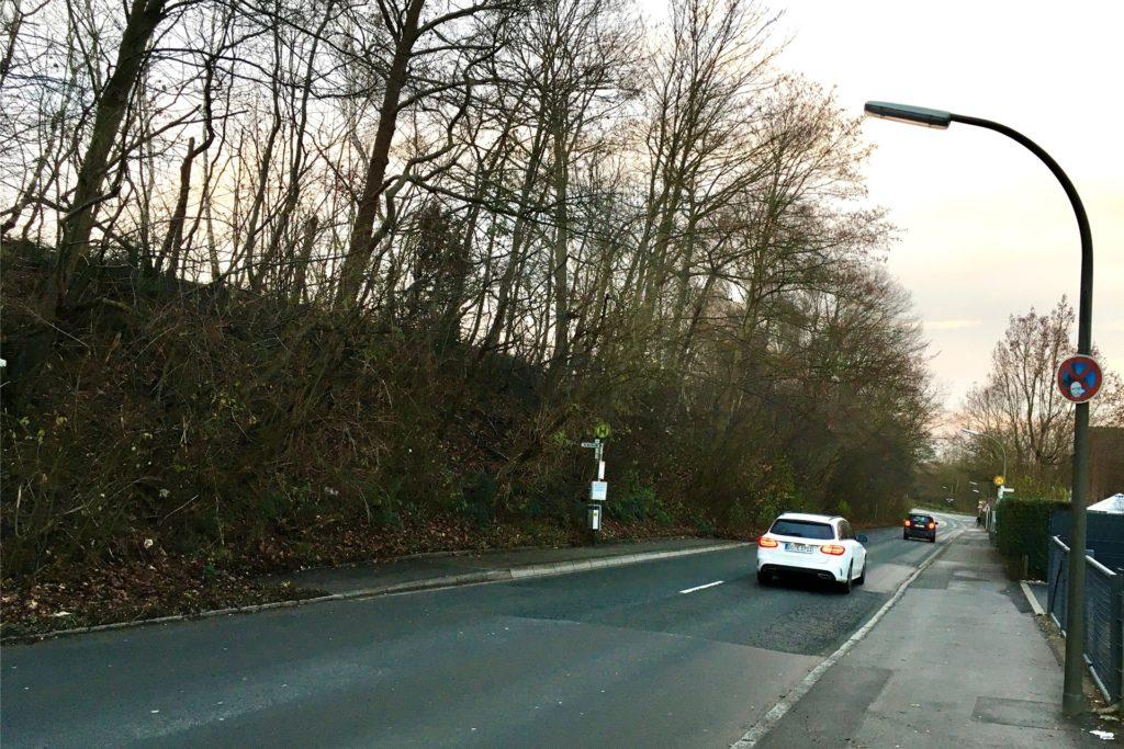 Ein Gehweg existiert nur auf einer Seite der Straße.