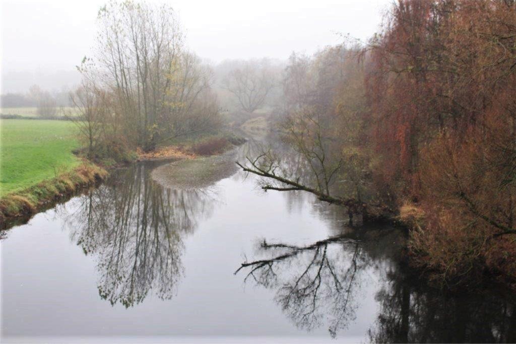 In der Ruhr entstehen kleine Inseln, die bei normalem Wasserstand nicht zu sehen sind.