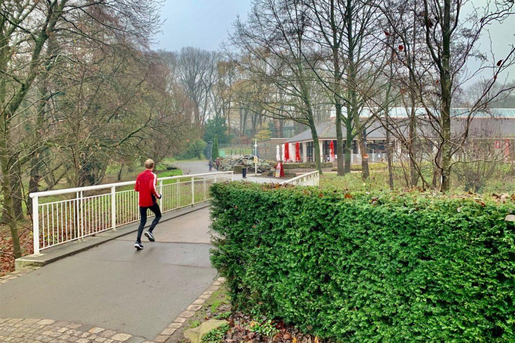 Der Rombergpark ist eine beliebte Jogging-Strecke. Die Beleuchtung ist teilweise aber schlecht.