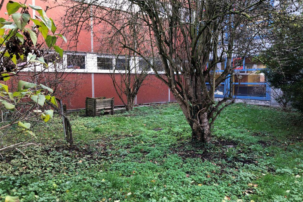 Aus diesem derzeit noch ungepflegten Innenhof an der Erich-Kästner-Grundschule könnte bald ein grünes Klassenzimmer werden