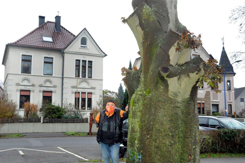 Aus dem Baumstumpf am Amtsstraßen-Eingang zum Spielpark Amtswiese würde Bernd Schumacher auch gern noch eine Skulptur gestalten.
