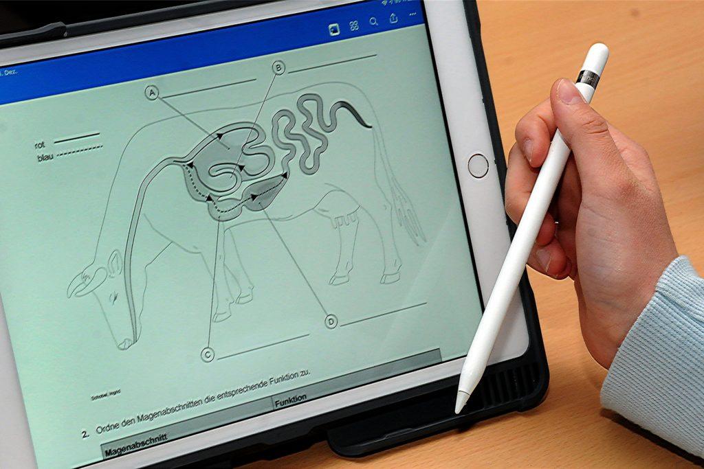 Statt auf Arbeitsblättern aus Papier erledigen die Schüler der Laptop-Klasse 5b einen Teil ihrer Aufgaben digital am Bildschirm.