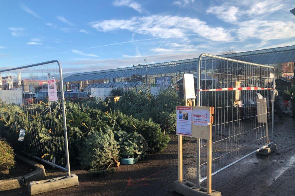 Das Gartencenter Augsburg bleibt mit eingeschränktem Angebot geöffnet, unter anderem werden Weihnachtsbäume und Schnittblumen angeboten.