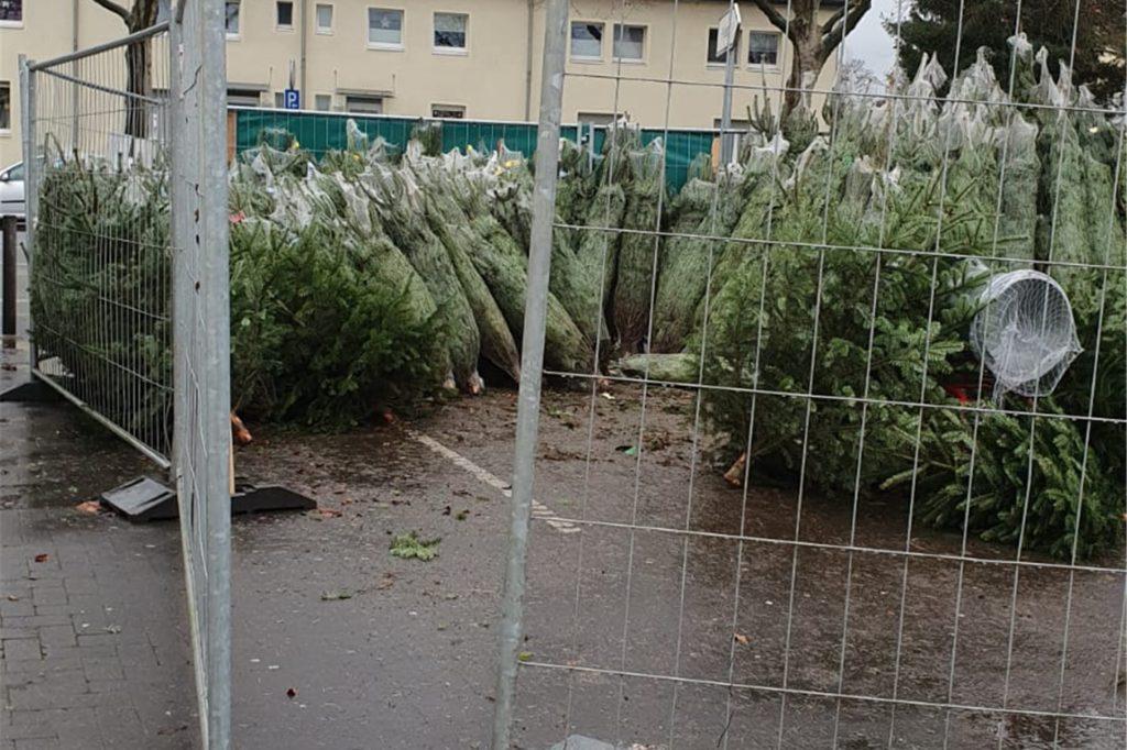 Unbekannte haben von diesem Stand 15 Weihnachtsbäume gestohlen.