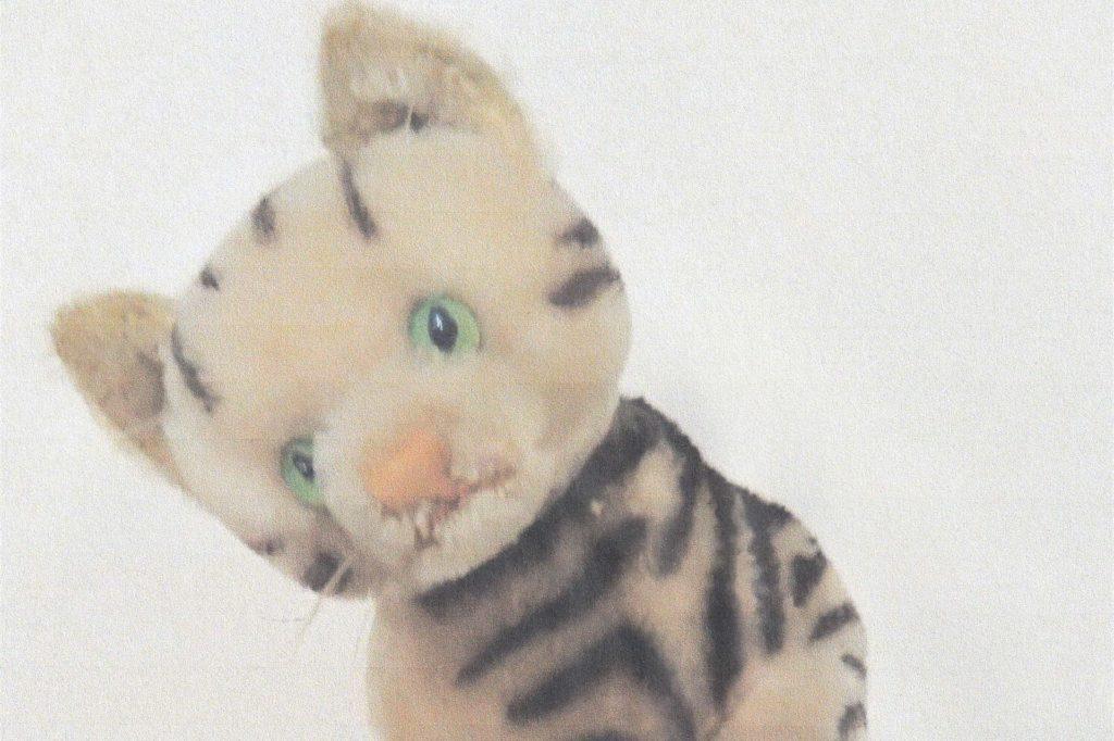Die Steiff Katze hat Ingeborg Bolinger in den 50er-Jahren zu Weihnachten geschenkt bekommen. Bis heute wird sie von dem Stofftier begleitet.