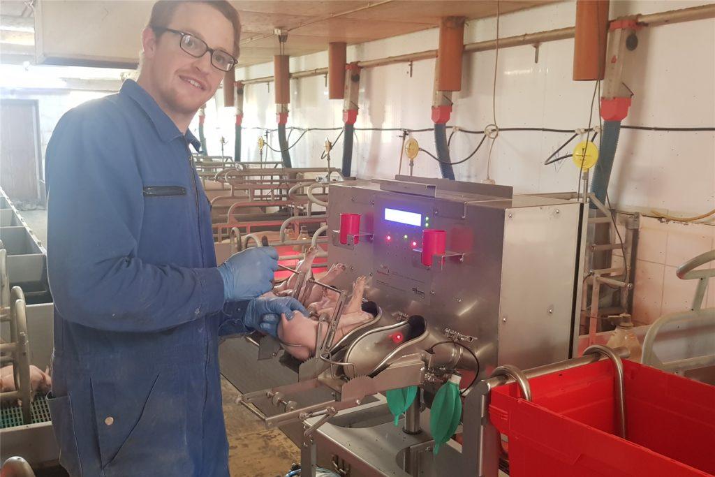 Tobias Großerichter musste einen zweitägigen Lehrgang absolvieren, um seine Ferkel mit der neuen Methode selbst kastrieren zu dürfen.