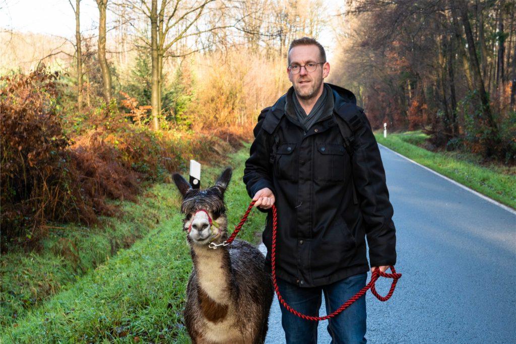 Ein Mann und ein Alpaka: Autor Raphael Kampshoff und Carmelo auf Wanderschaft.