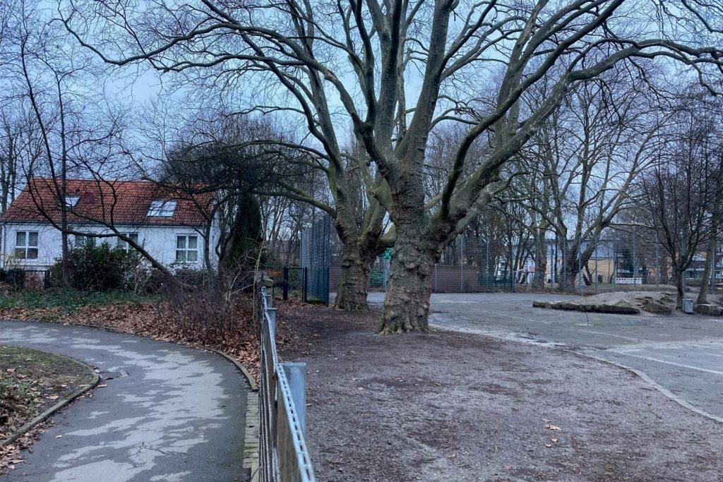 Der geplante Neubau der Grundschule auf dem hinteren Teil des Schulhofs würde unmittelbar an die Wohnhäuser an der Blankensteiner Straße angrenzen. Zahlreiche alte Bäume müssten weichen.