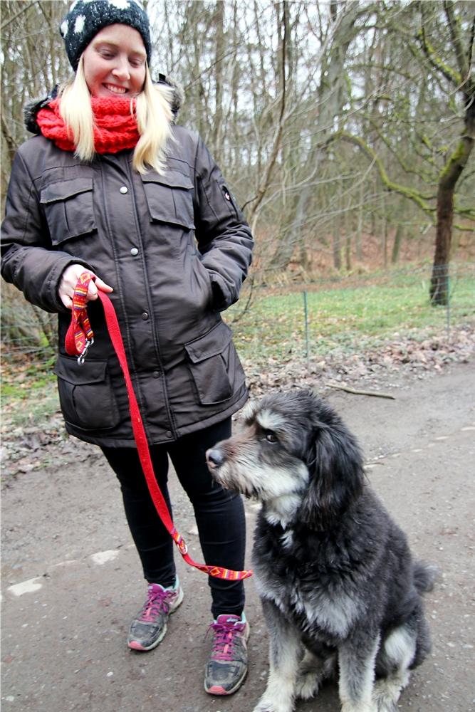 Bei den Spaziergängen mit ihrem Hund Arthos stellte Rebecca Lausen fest, dass momentan selbst auf den Feldwegen viel los ist.