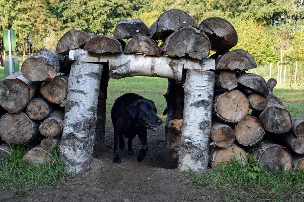 Tunnel und Brücke zugleich ist dieses Holzbauwerk auf dem Gelände der Hundewiese. Wegen der Pandemie ist Doghausen seit 2. November vorübergehend geschlossen.