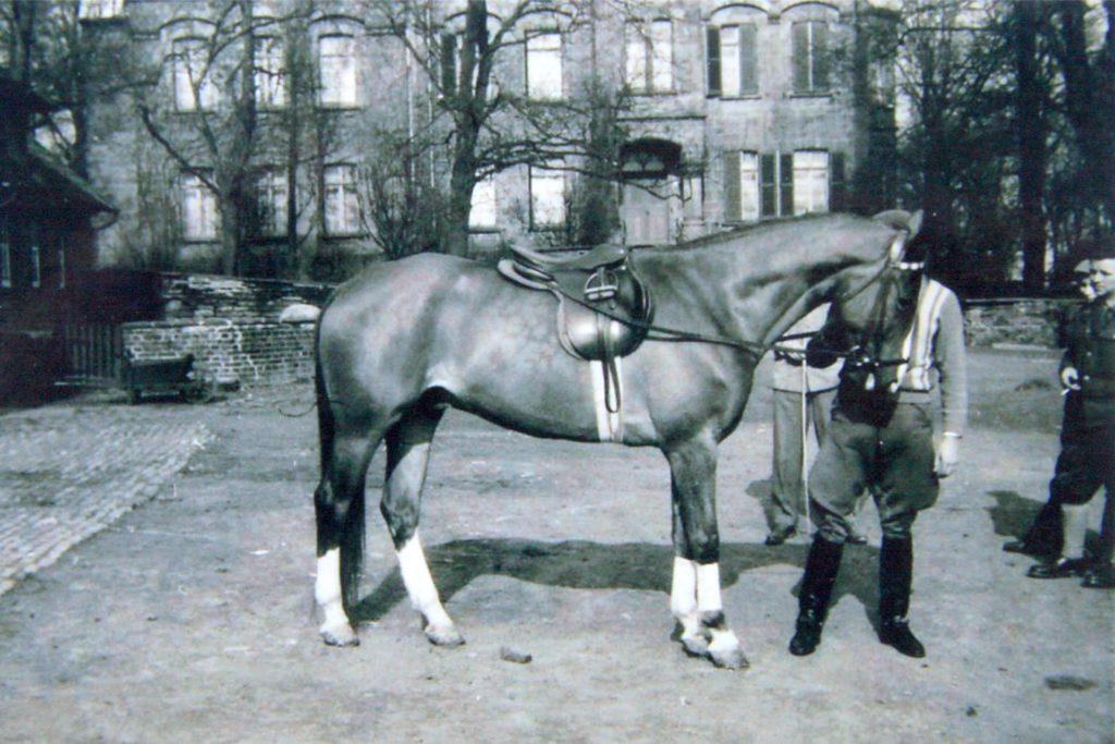 Die Familie Overweg war für ihre prächtigen Reitpferde bekannt.