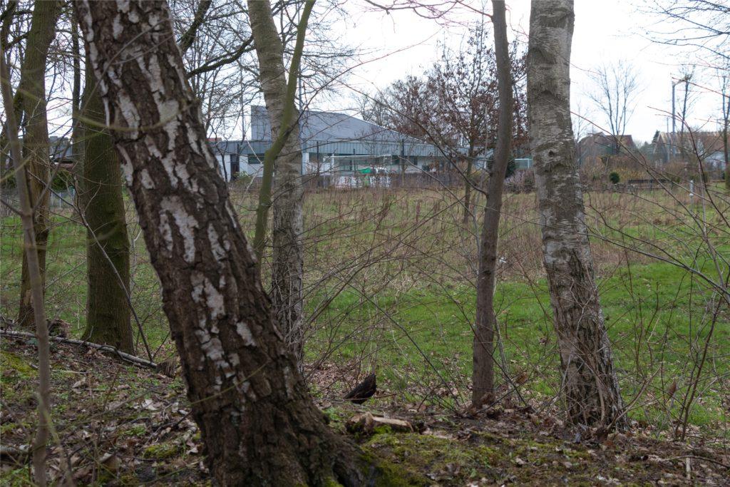 Das Jugendhaus Pool im Hintergrund: Diese gemeindeeigene Fläche wird als möglicher Standort für die neue Kita anvisiert.