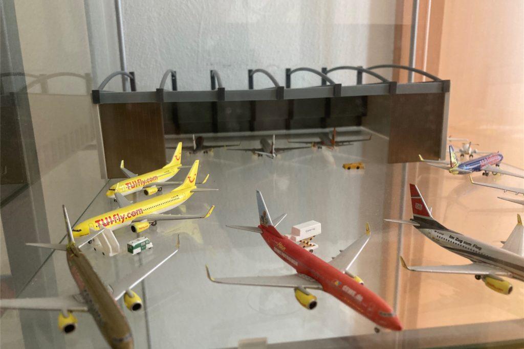 Marcel Böhme sammelt Modell-Flugzeuge. Er besitzt sicher 100 Stück.