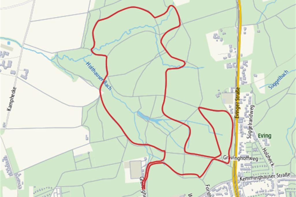 Die Fünf-Kilometer-Runde durch das Grävingholz beginnt und endet nahe des Sportplatzes der SG Phoenix Eving.