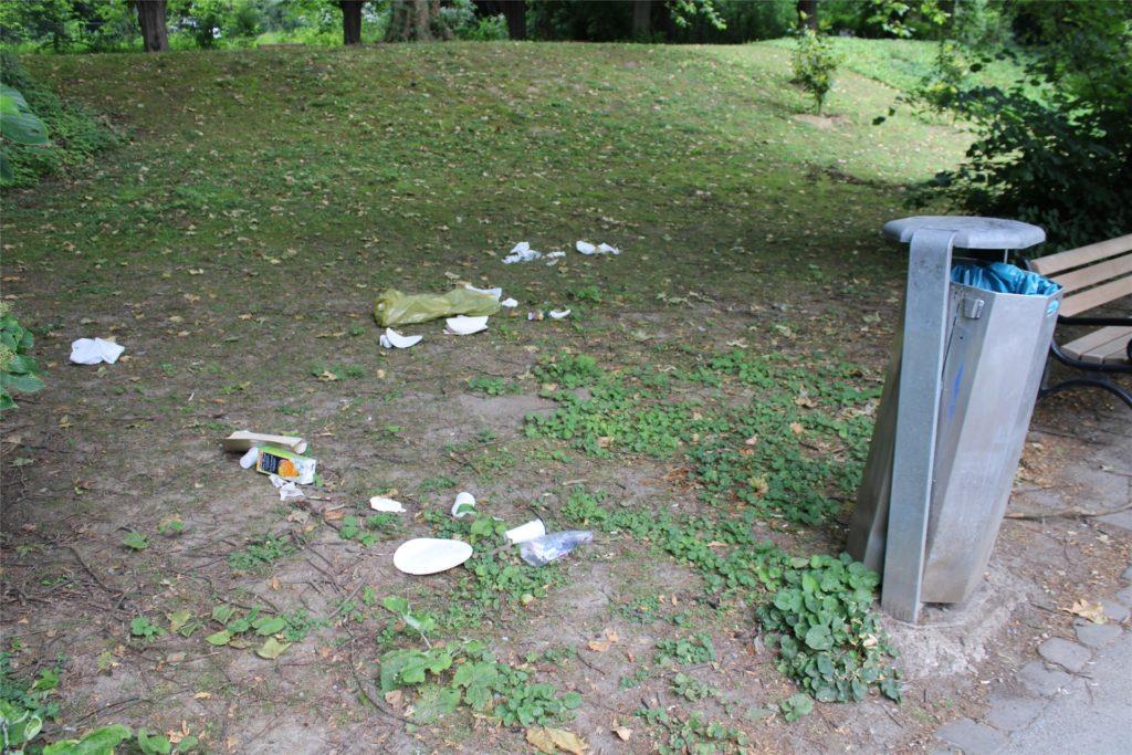Lose Mülleimer und Müll auf der Wiese: Das Foto entstand 2020 auf dem Weg rund um den Teich.