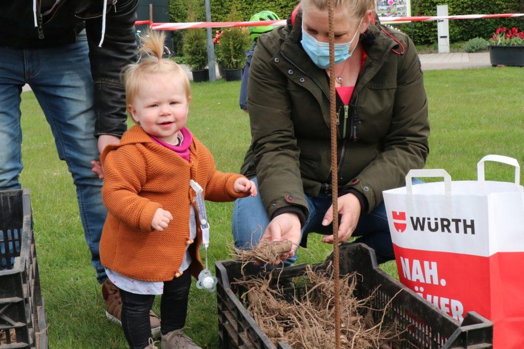 Groß soll sie sein und repräsentativ. Sarah und Matthias Schütter und ihre Tochter Nora finden Dahlienknollen für ihr Beet im Vorgarten.
