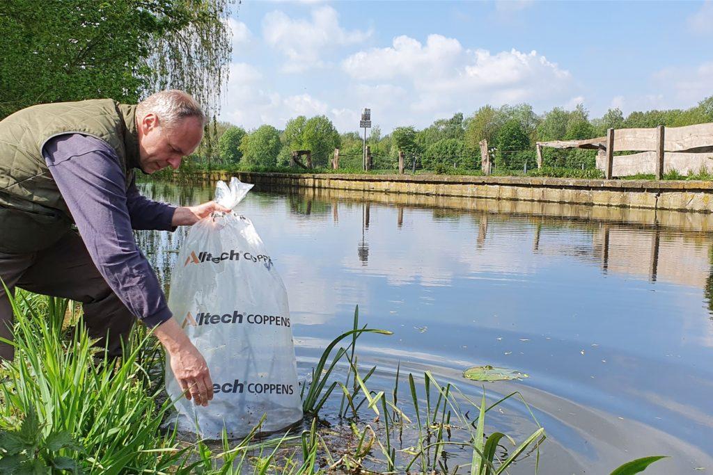 Ganz vorsichtig setzt ASV-Gewässerwart Rainer Borgert den Sack mit den 1000 kleinen Quappen in der Dinkel ab, ehe er die Tüte öffnet und die kleinen Fische in die Dinkel lässt.