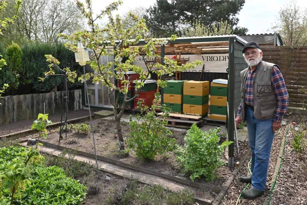 Rottmann züchtet unter anderem Bienen in seiner Parzelle. Er vermutet, dass sich Wanderraten in einem Holzhaufen in der Nachbarparzelle eingenistet haben.