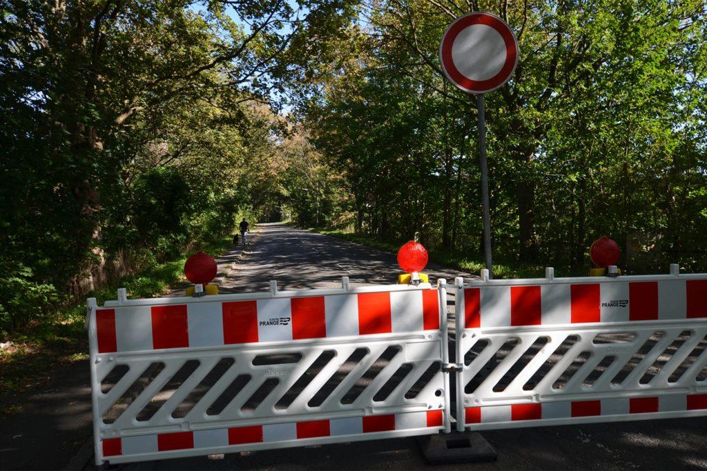 Dichter Baumbestand säumt die Rampen zur Schwieringhauser Brücke. Unterhalb liegt das Naturschutzgebiet Siesak. Ein Neubau der Brücke an gleicher Stelle würde weniger in die Natur eingreifen.