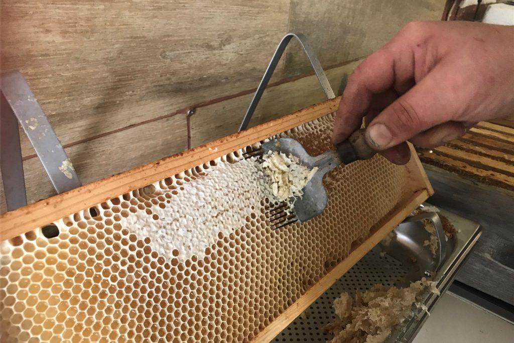 Die Gabel nimmt nur die Wachschicht von den Waben. Der Honig bleibt in den Zellen.